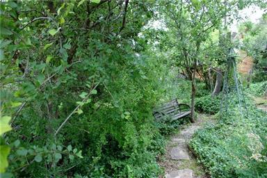 4 Spanish Oak Trail Photo #13