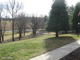 1042 Winchester Grade Road Photo #5