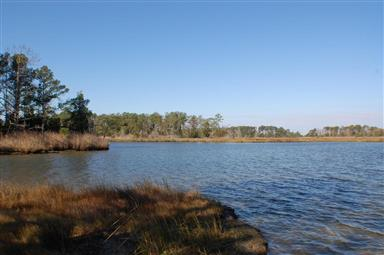 27770 Crisfield Marion Road Photo #16