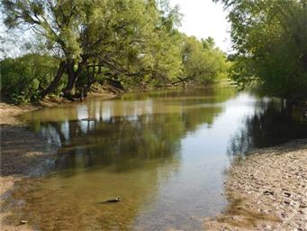 8411 River Run Drive Photo #2