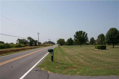 1540 Sunnyside Road Photo #3