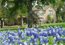 130 Little Gabriel River Drive, Liberty Hill, TX 78642