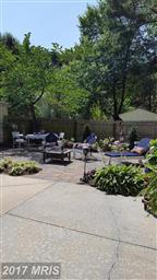 1008 Riverview Terrace Photo #8