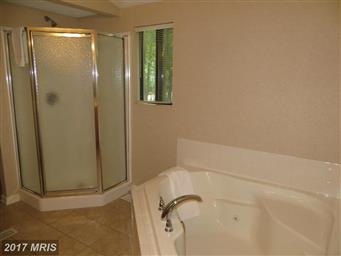 102 Conifer Lane Photo #14