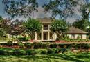704 Tall Pines Drive, Friendswood, TX 77546