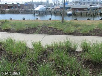 900 Marshy Cove #103 Photo #20