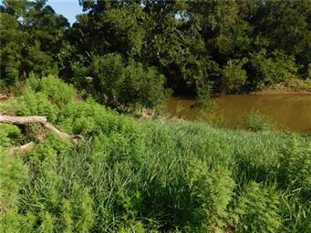 8411 River Run Drive Photo #22