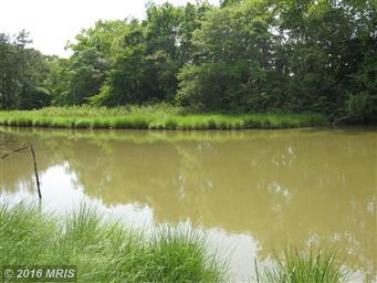 49778 Fresh Pond Neck Road Photo #7
