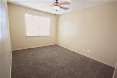 11037 Coyote Ranch Ln Photo #34