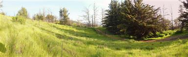 46720 Pfeiffer Ridge Rd Photo #7