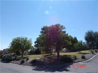 3200 Mountain Ridge Drive Photo #24