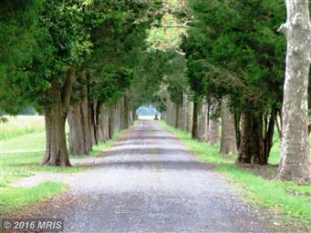 5793 Quaker Neck Landing Road Photo #4