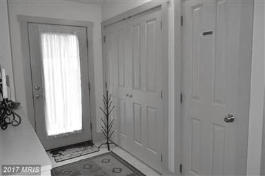 145 Silver Tree Lane Photo #3