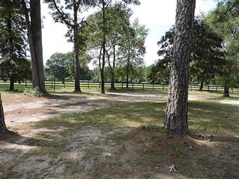 559 Yarborough Loop Photo #2