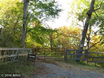 6 Off Route 220 High Knob Photo #16