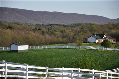 3578 Pious Ridge Road Photo #28