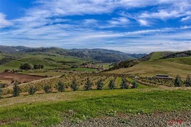 3755 Santa Rosa Creek Road Photo #4