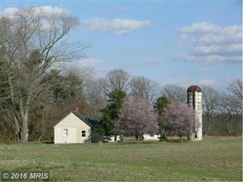 135 Bright Meadow Lane Photo #26