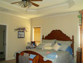 203 Whitewing Trail Photo #11