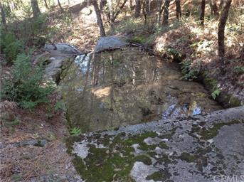 145 Shadow Creek Rd Photo #23