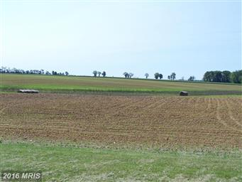 11878 Browntown Road Photo #4
