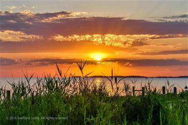 8407 Fishing Island Road Photo #31
