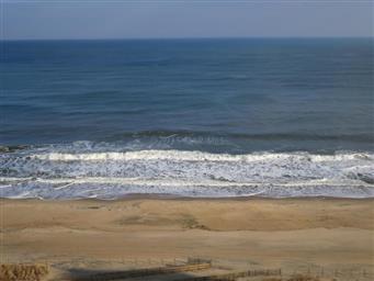 10900 Coastal Highway #1403 Photo #14