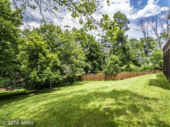 529 Georges Creek Boulevard Photo #28