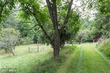 20542 Dovesville Road Photo #25