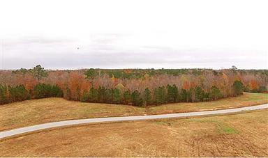 0 Lot 92 Sandy Creek Drive #1554757 Photo #7