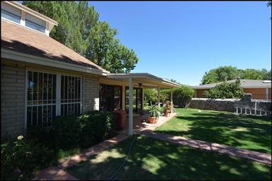 541 Meadow Oaks Court Photo #37