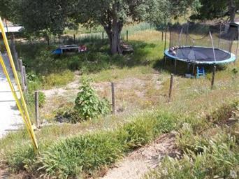 21300 Hacienda Drive Photo #3