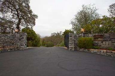14854 Lakefront Drive Photo #24