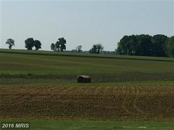 11878 Browntown Road Photo #14