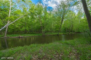 1389 Creek Road Photo #8