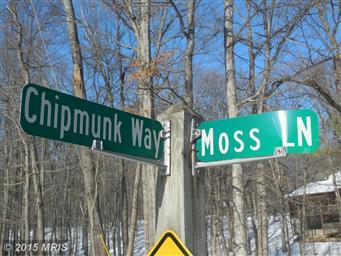 44 Moss Lane Photo #30