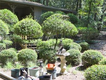 114 Weeping Willow Cove Photo #3