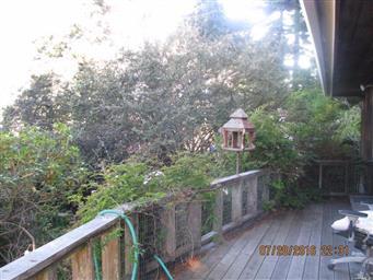 144 Woodland Drive Photo #31