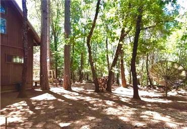 10764 Rosa Trail Photo #34