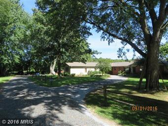 22056 Kelleys Park Road Photo #26