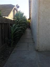 608 Sandown Street #2 Photo #6