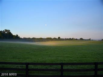 10074 High Point Road Photo #24