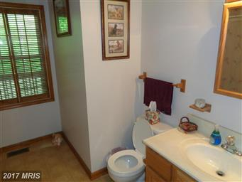 123 Poplar Hollow Lane Photo #21