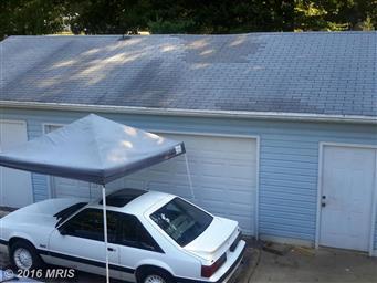 36925 Tanyard Drive Photo #5