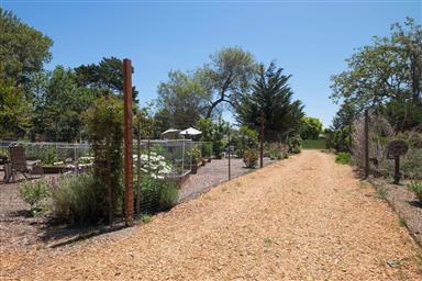 131 Hacienda Carmel Photo #19