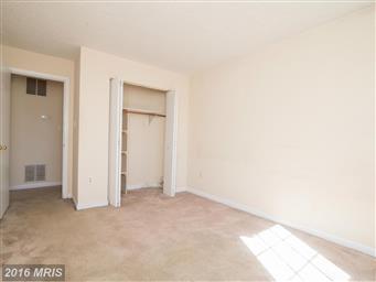 110 Timberlake Terrace #2 Photo #11