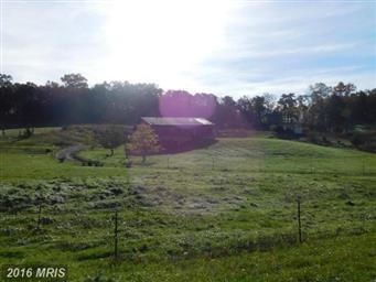221 Private Ranch Road Photo #12