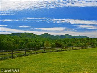 128 Shawnee Hill Trail Photo #28