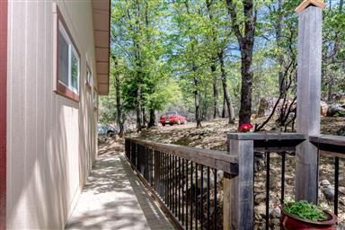 10643 Rosa Trail Photo #15