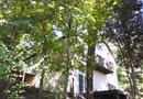 237/238 WINTER HAVEN DR, Varna, IL 61375